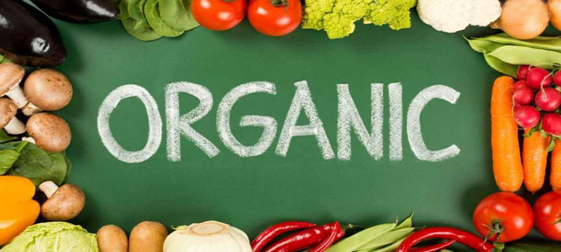 organic produce and its disadvantages Organic produce is far from being just a fad or a marketing ploy in fact there are several very important reasons you should choose organic produce here are three reasons to sit up and pay.